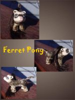 My Little Ferret Pony by ZarineBashire