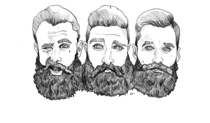 Beards by econ5000