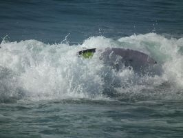 Small Wipeout by BrendanR85
