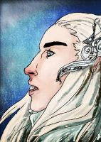Thranduil in Winter by RennaLorie