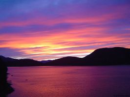 Marlborough Sounds Sunset 2 by Easel