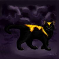 The Cat from my dream by ShadesOfDreams