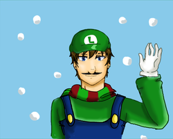 It's Been A Wonderful Year by 12luigi