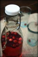 Cranberry juice by Linuziux