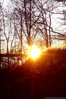 Sun I by Himmelsfalter