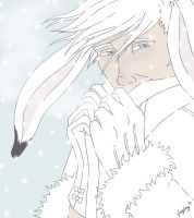 Bunny Wintercoat by vangberg