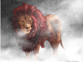 Lion of the North by Eden-Turunen
