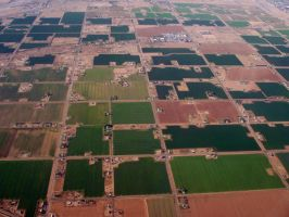Agricultural Patchwork by ColonelFitz