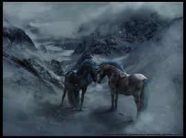 COMMISSION: Fog on the Mountain by THE-WEATHERED-RAVEN