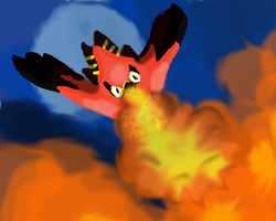 Talonflame used flame trower by Puccawitch