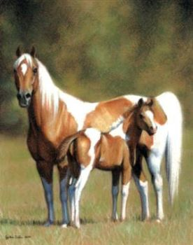 Pintabian Mare And Foal by ZsofiaGyuker