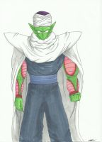 Piccolo by shadesoflove