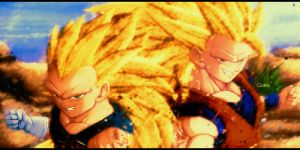 SSJ3 Vegeta and SSJ3 Goku Request by The-Potara-Fusion