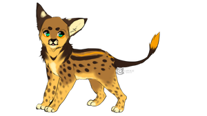 serval x lion adopt by Capukat