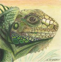 Paleozoic Poser by kcimaginary