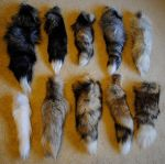 More Tails Galore for Sale!!! by Wolf-Reaper