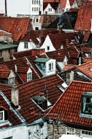 Roofs of Luebeck by antarialus