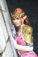 Princess Zelda by sakana
