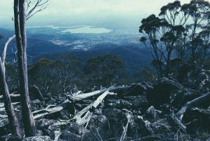 Mt.wellington by TheBIankCanvas