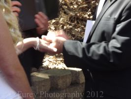 Exchanging of The Rings by Kargroth