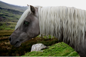 Hobbit, Misty Mountains. by horse-power