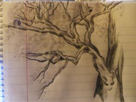 A Quick Pencil Sketch Of A Broad Leaved Tree by Artzy-chick