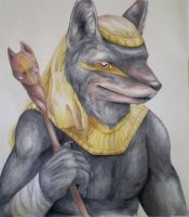 Anubis by Silverbirch