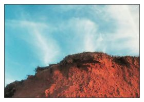 iron soil and blue by Tachy-on