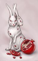 pomegranate rabbit by Amap0la