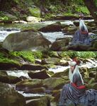 Thranduil King of the Woodland Realm (8) by NothingButTheBeat