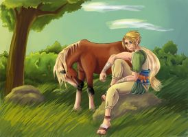 Link with Epona for Kelly by Megadee