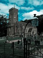 St Audries  Somerset by liverecs