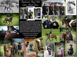 Local Horse Magazine by angel-brittony-adams