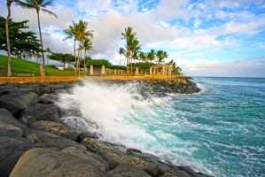 Splash of Hawaii by manaphoto