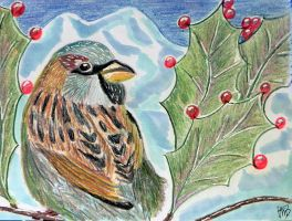 HolidayCard Hello Bird by Lou-in-Canada