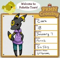 PKMN crossing application by StarLynxWish