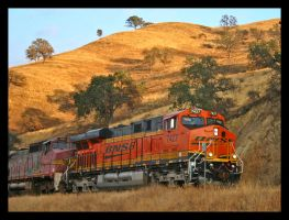 BNSF 7427 above Caliente by photogatlarge