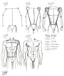Basic male utter body tut by Destinyfall