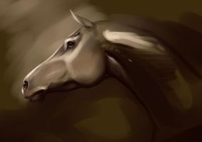 Horse sketch by Lolilith