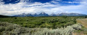 Grassy Tetons by aseaofflames