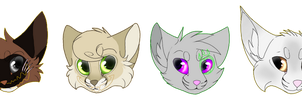 TGB || Headshots by rainwolfeh