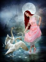 Swan Lake by EstherPuche-Art