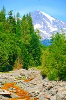 Mt. Ranier National Park by the-sashimi-frog
