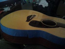 Guitar Project 2010 - Phase 1 by Kalutica