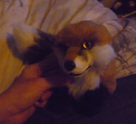 Small red fox WIP by goiku