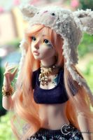Pommie by tinaheart