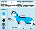 Star Reference Sheet by mashaheart