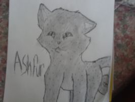 Asheh by JournalArtist