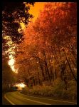 Autumn 2006 part 4 by tomeq