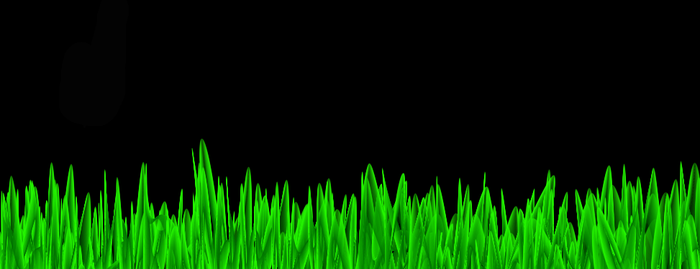 Grass by Pizzaface4372